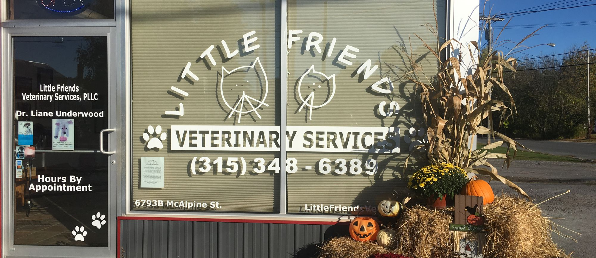 little-friends-vet-slideshow-01a